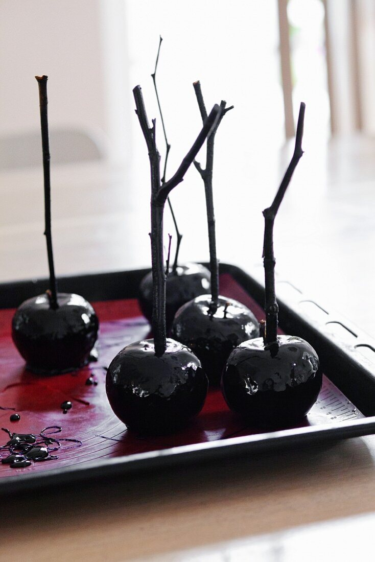 Toffee apples on twigs
