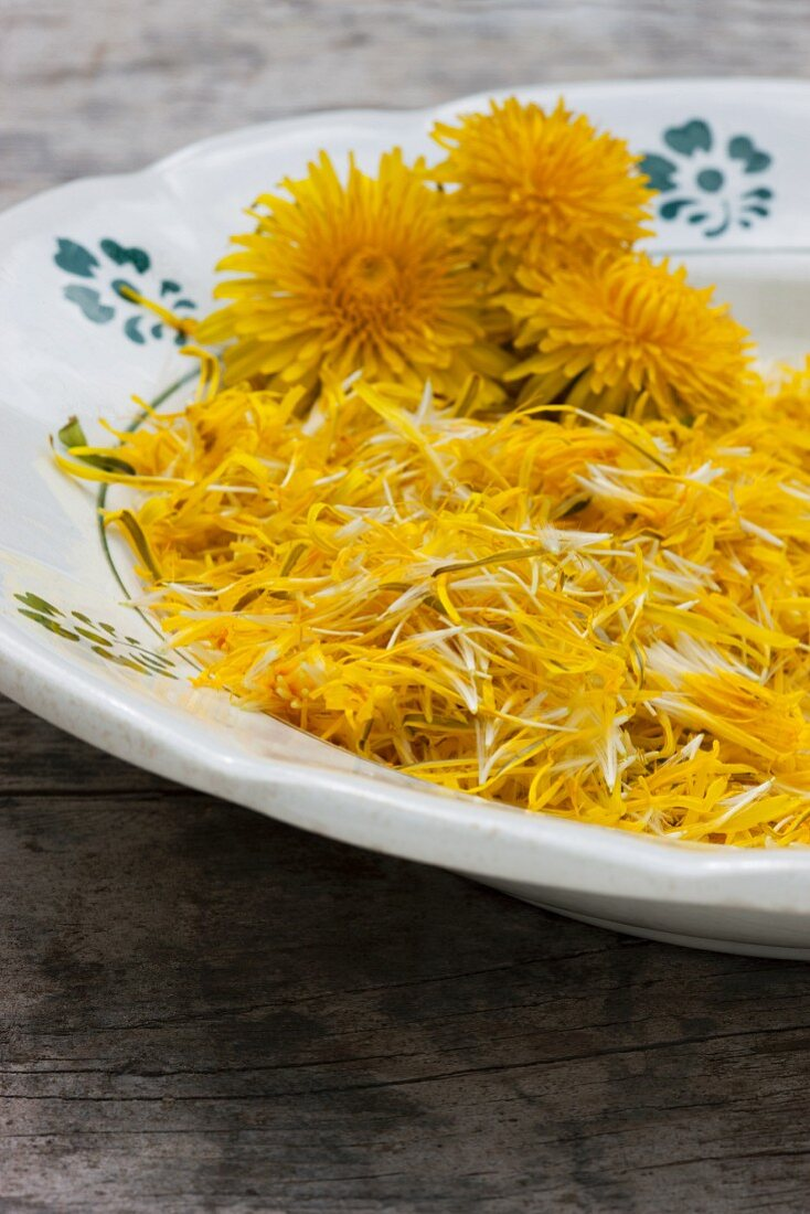 Freshly picked dandelion petals and whole flower heads on old plate