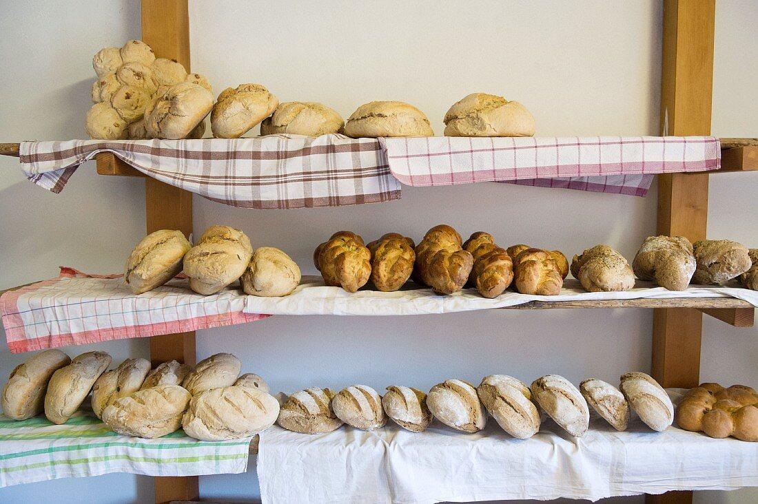 Assorted types of bread in a rural bakery, Graubünden, Switzerland