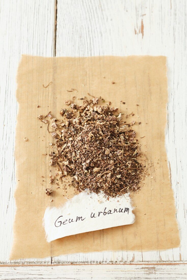 Wood avens (Geum urbanum), dried