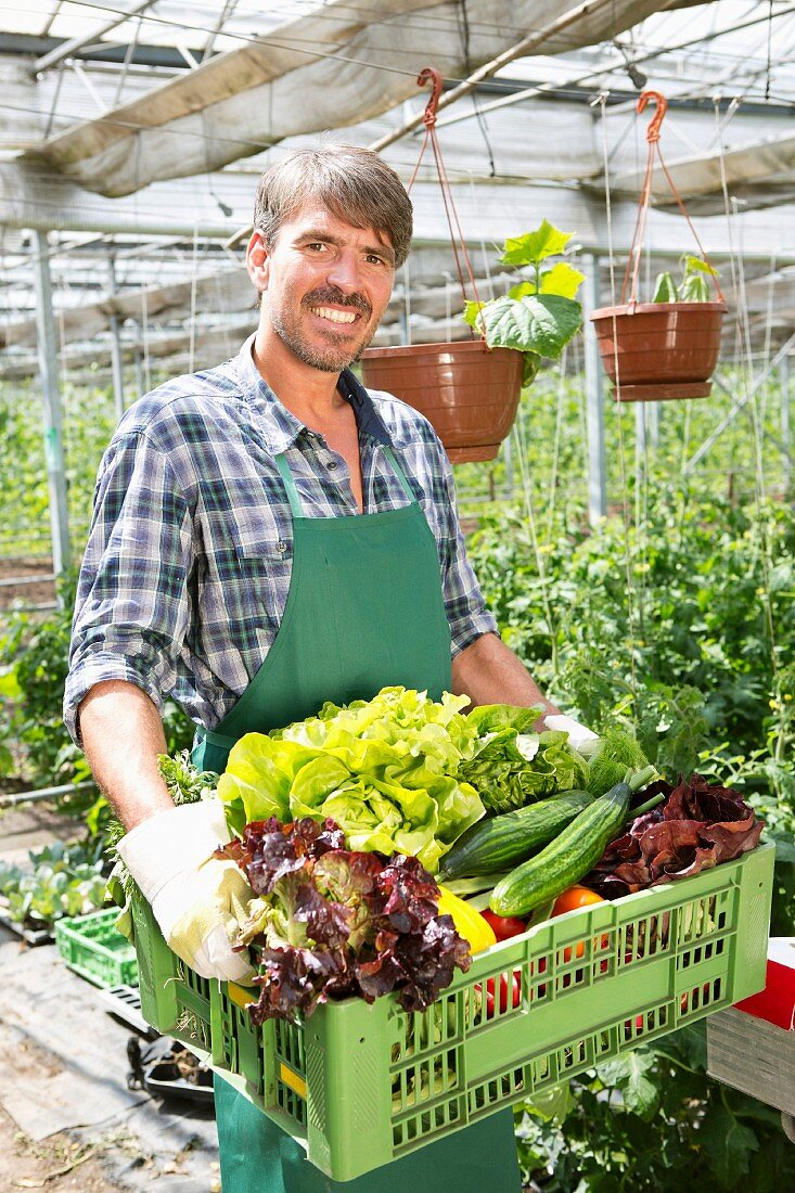 A farmer with organic vegetables in a crate