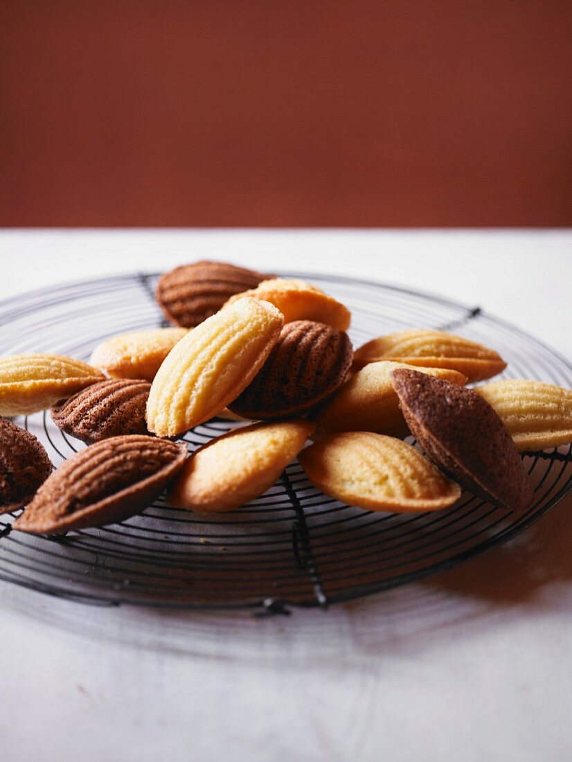 Madeleines on a cooling rack