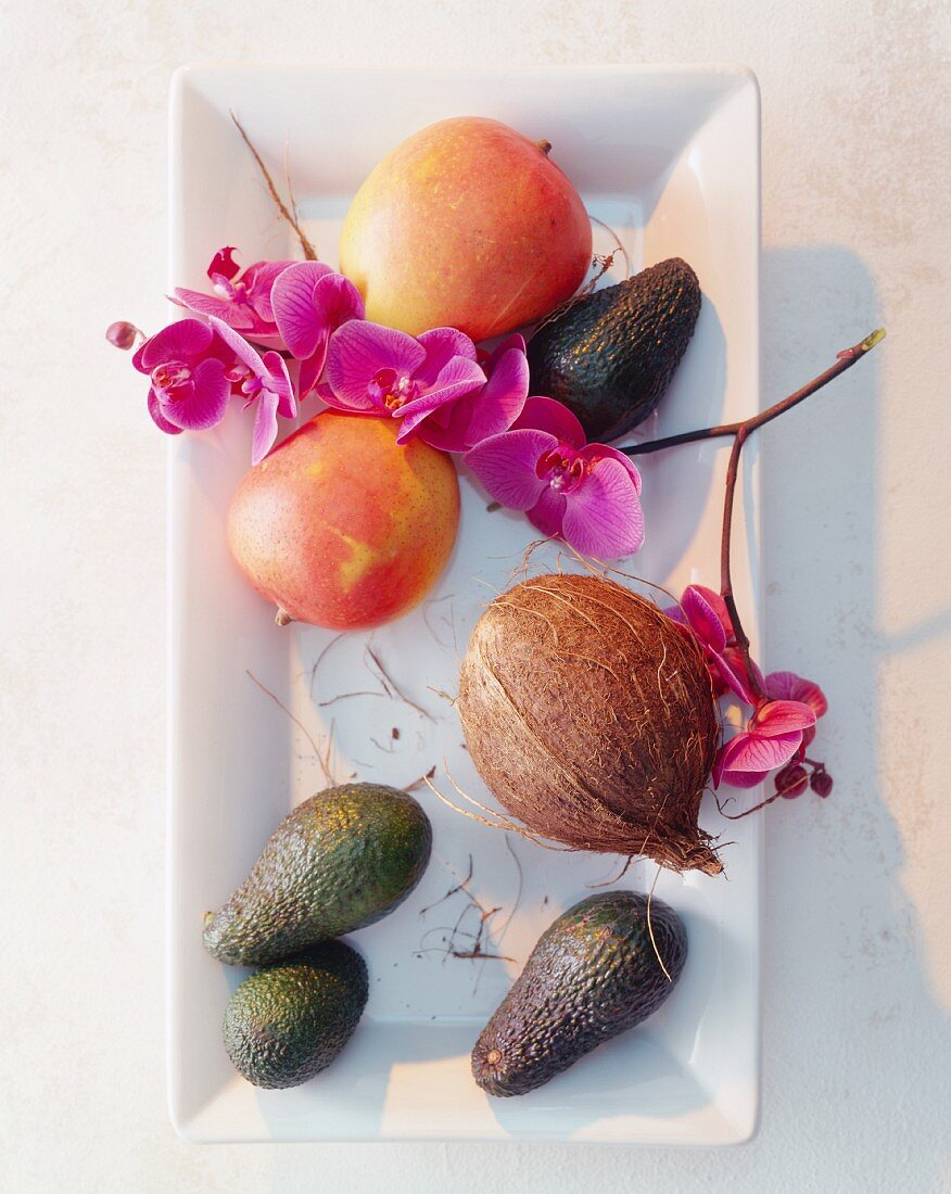 Mangos, a coconut and avocados with orchid flowers on a serving platter