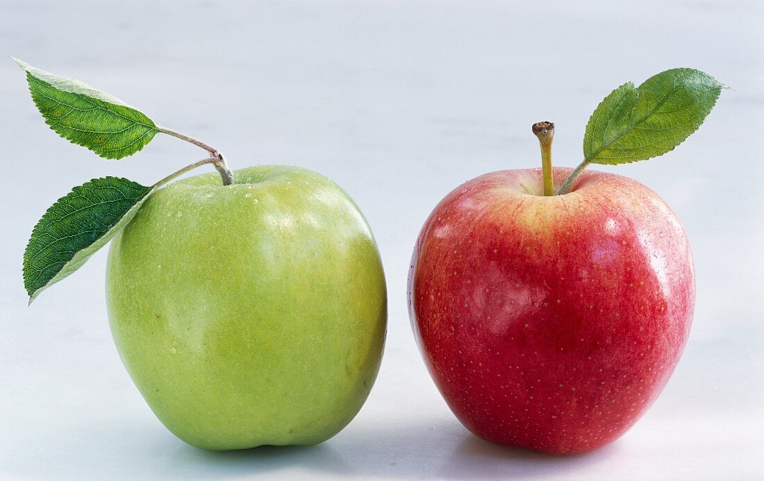 A red and a green apple with leaves