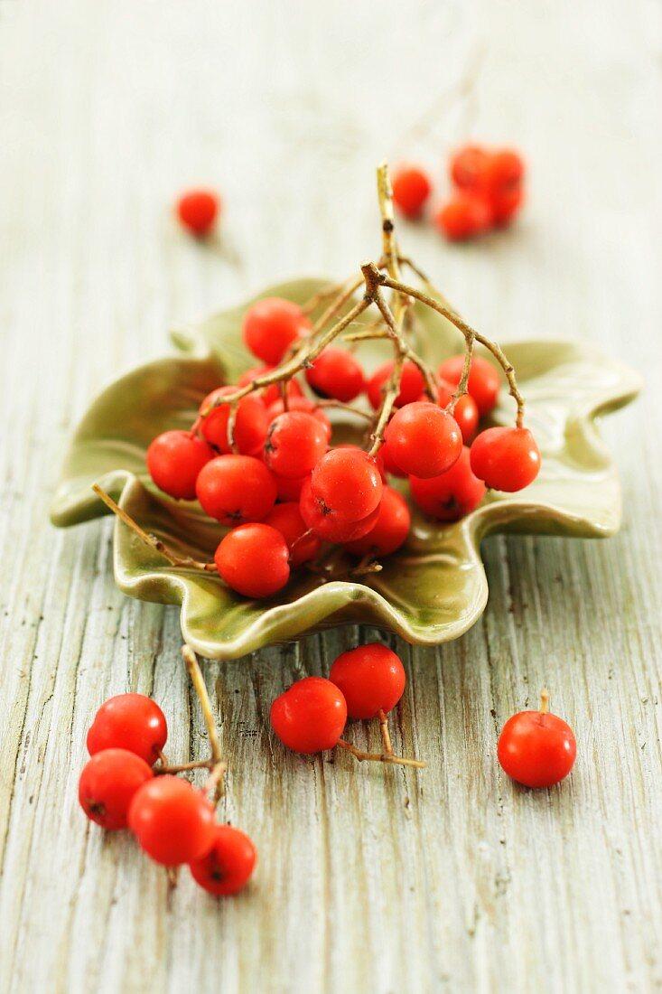 Rowan berries in a green bowl