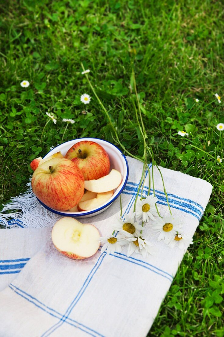 A whole apple and apple wedges in an old enamel bowl on a linen cloth in a field, with oxeye daisies