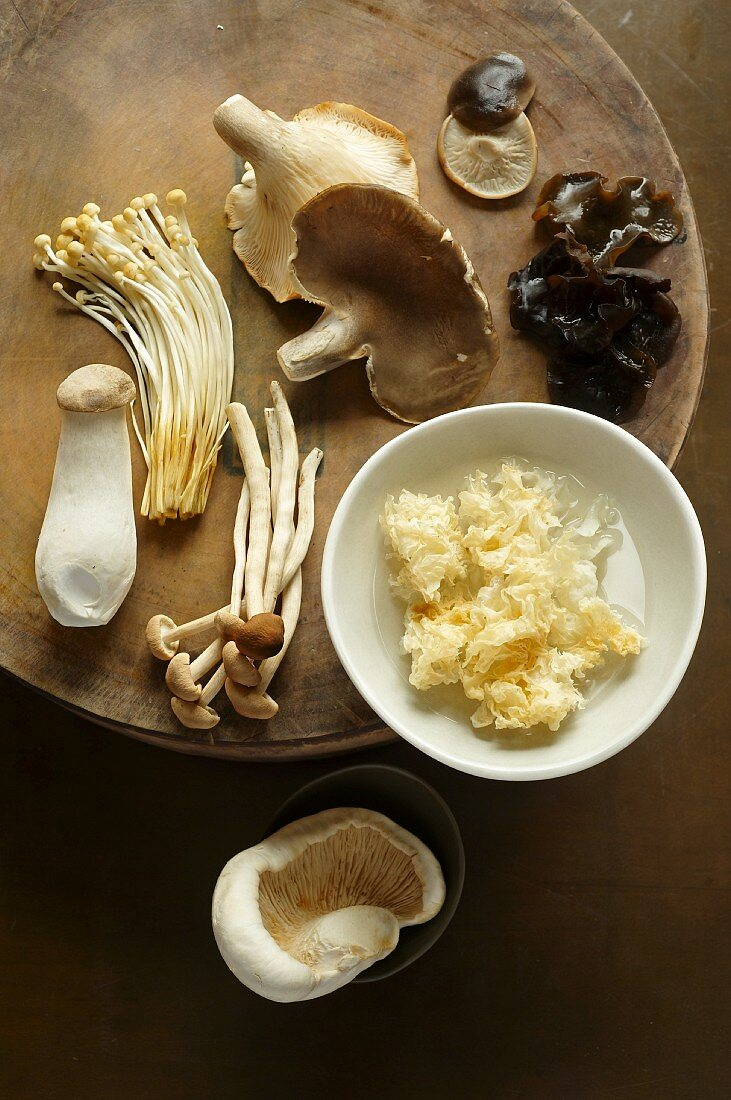 An arrangement of Chinese mushrooms