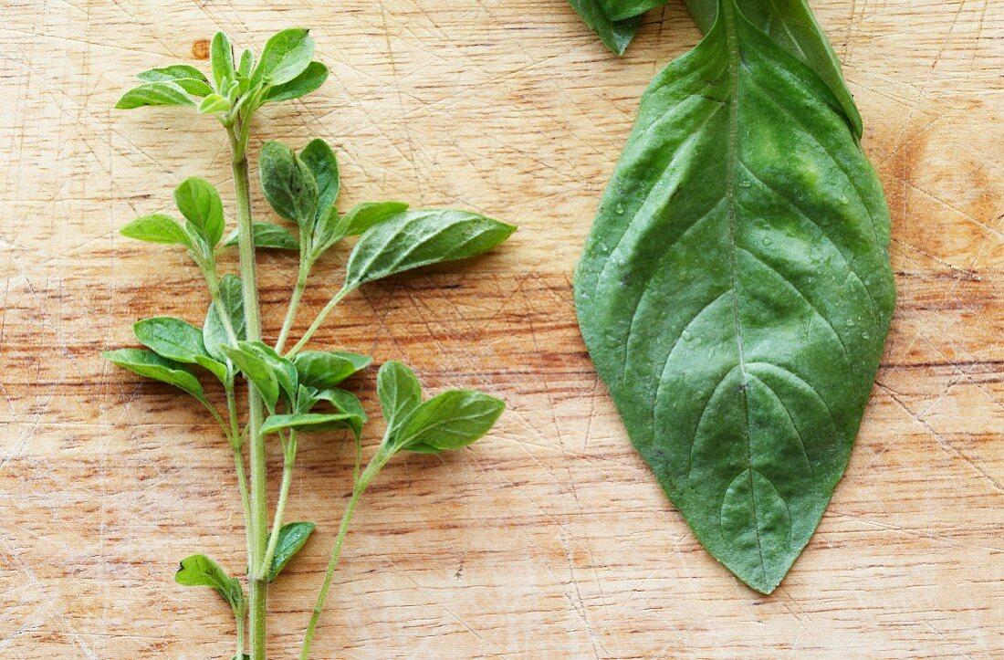 A Fresh Sprig of Oregano next to a Leaf of Basil