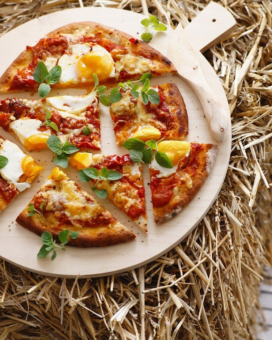 Still life of fresh egg pizza with herbs