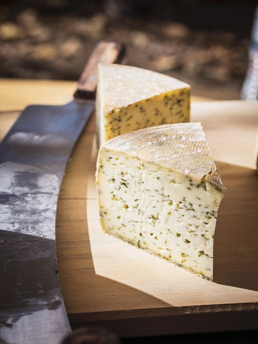 Slicec of Georgian muchli cheese with herbs.