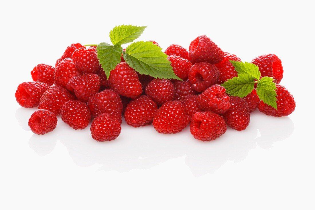 Lots of fresh raspberries with leaves