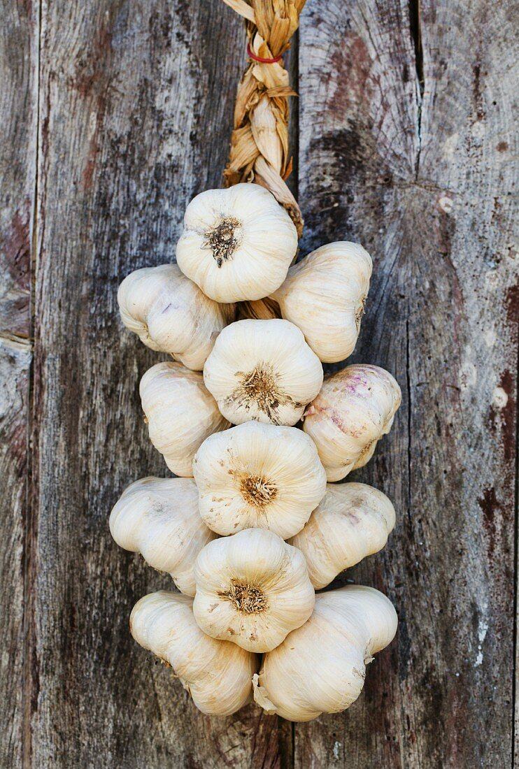 Plaited garlic hanging against a wooden wall