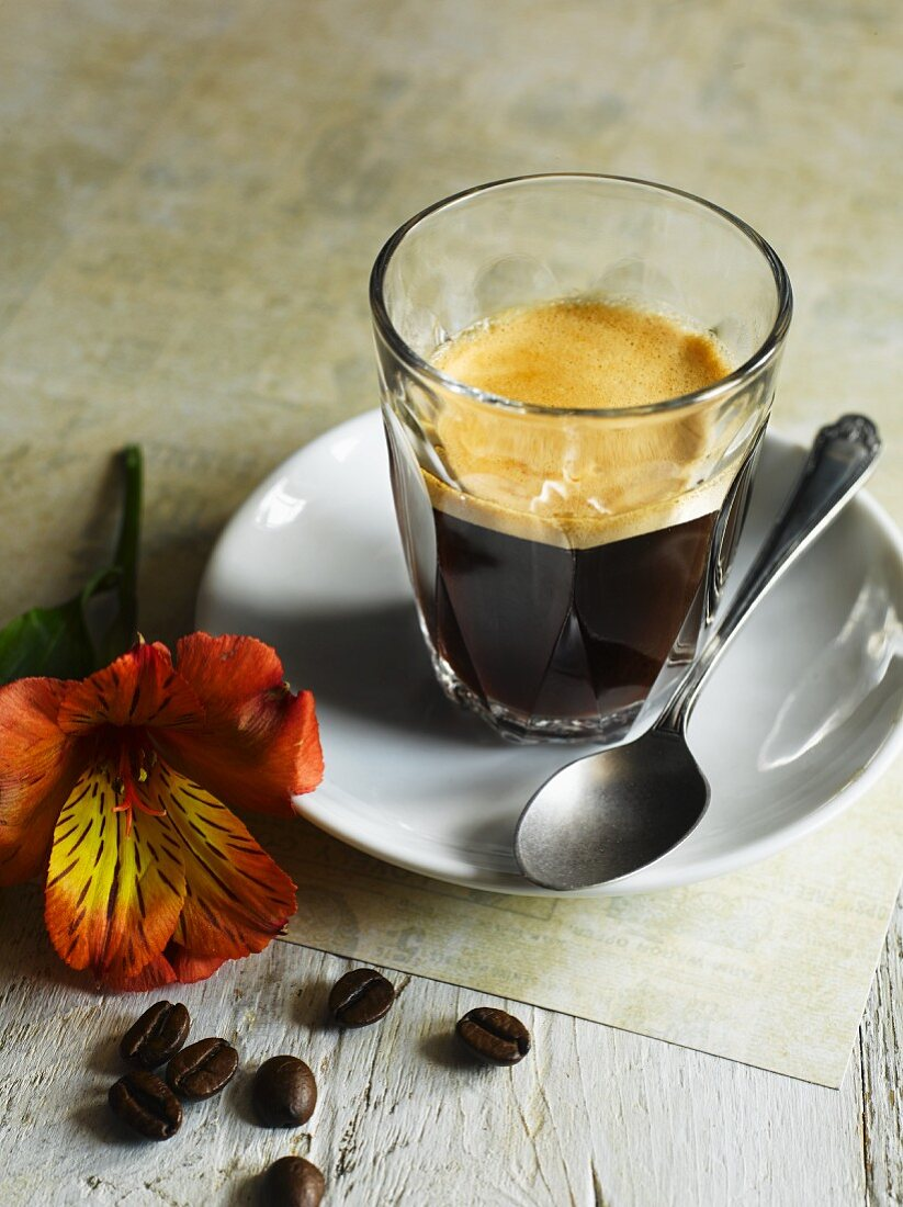 Caffè crema, coffee beans and an exotic flower