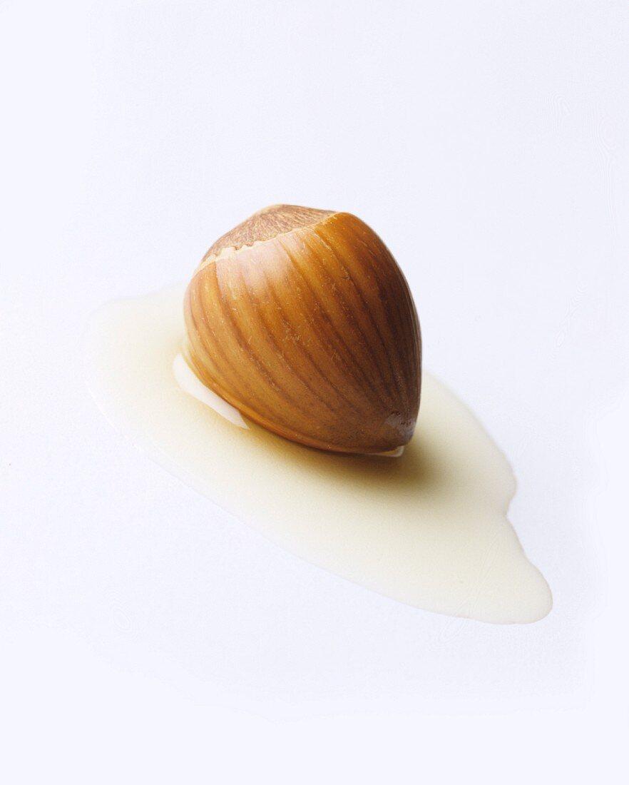 A hazelnut in a small pool of nut oil