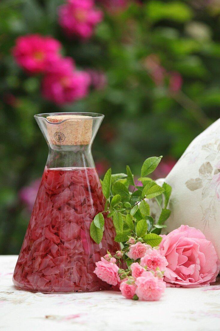 Rose petals being steeped in vinegar to make rose vinegar