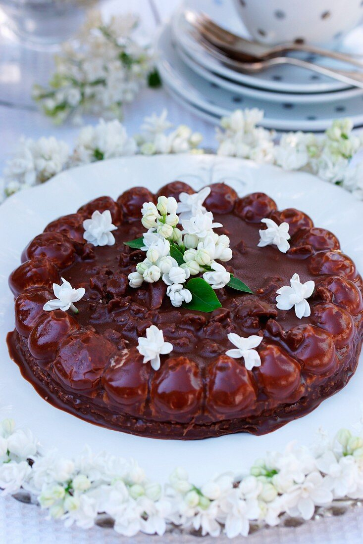 Chocolate cake with white lilac blossoms on a garden table