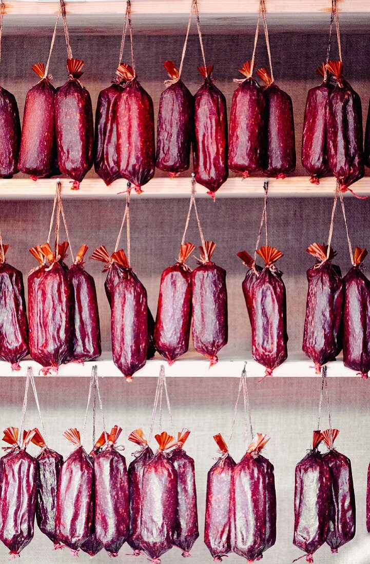 Smoked Hungarian Gyulai sausages in a butcher's shop