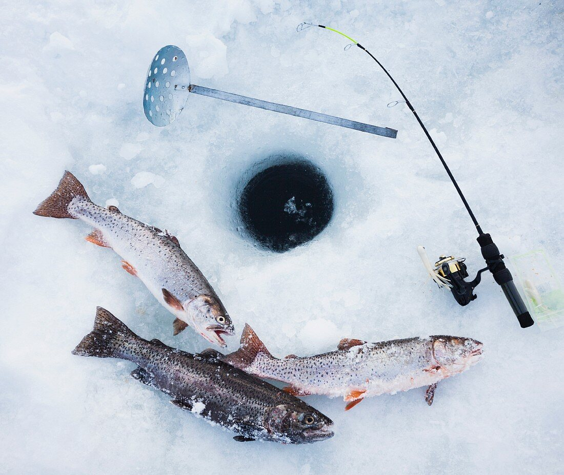 Tools for ice fishing next to a hole in the ice and freshly caught fish
