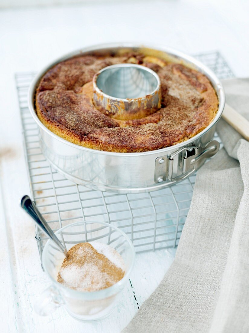 A Bundt cake with cinnamon sugar in a baking tin