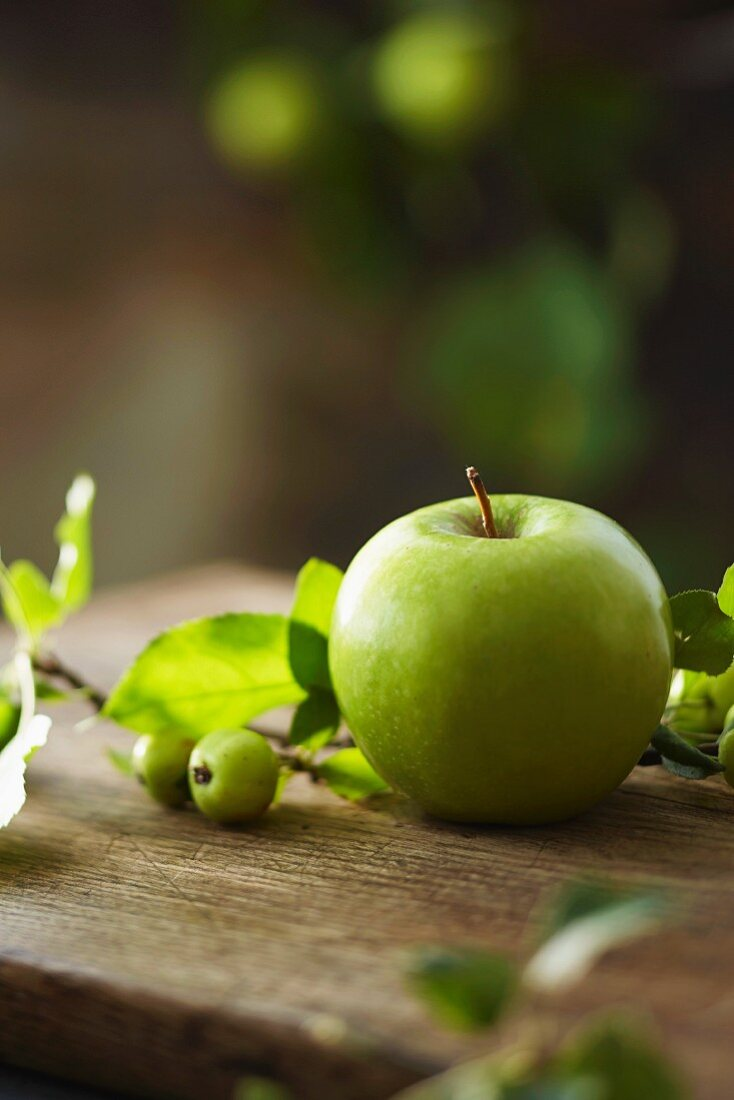 A fresh Granny Smith apple and a sprig from an ornamental apple tree on a wooden board in a garden