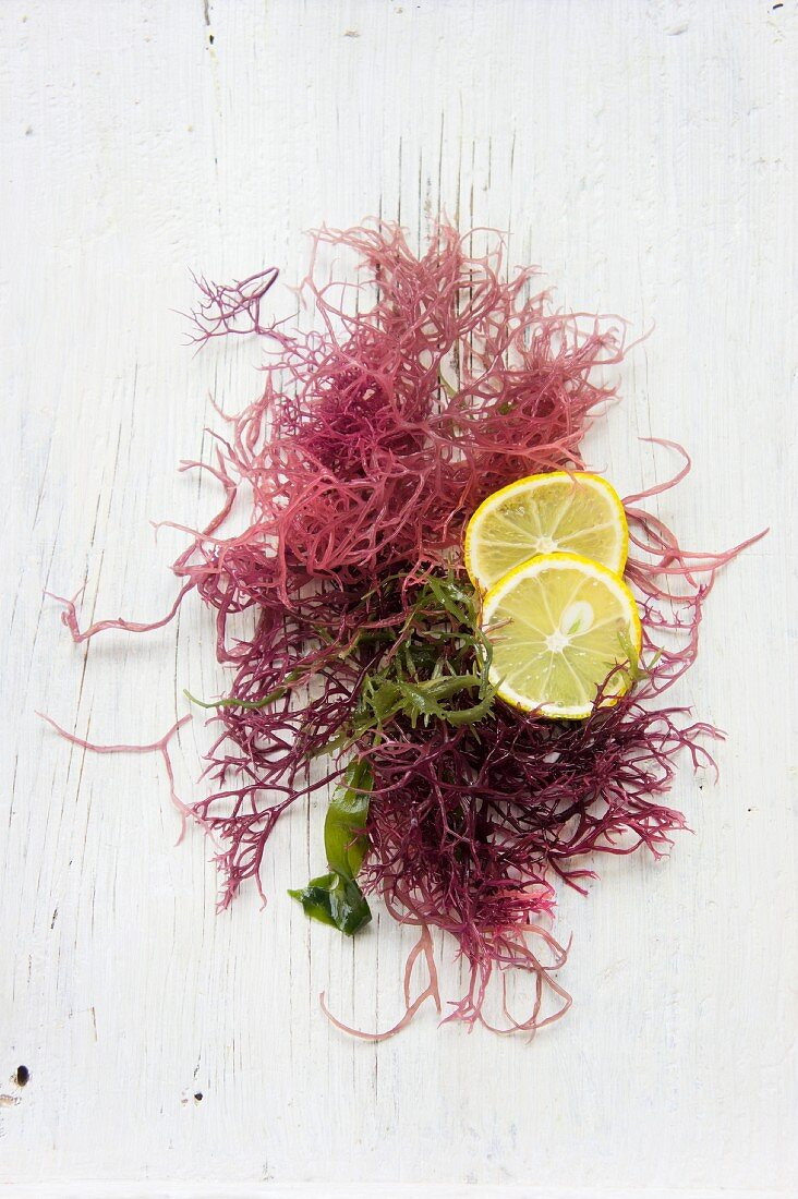 Red seaweed and yuzu slices