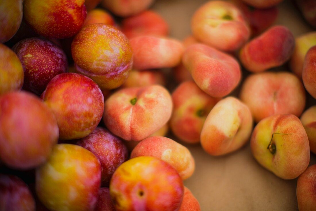 Vineyard peaches and red plums