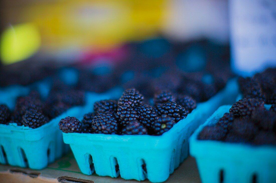 Blackberries in blue punnets