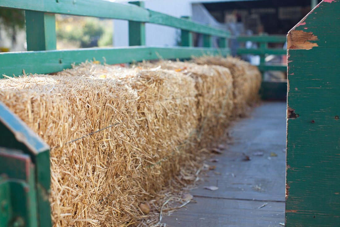 Bales of hay in a tractor trailer