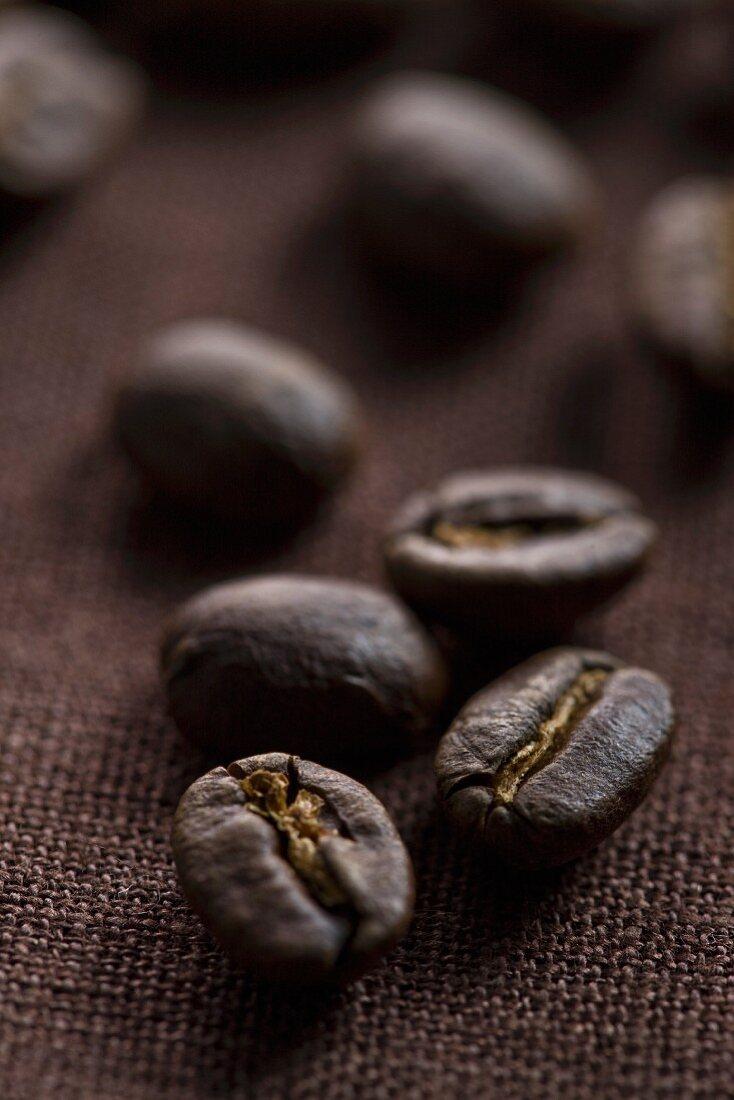 Coffee beans on dark brown fabric