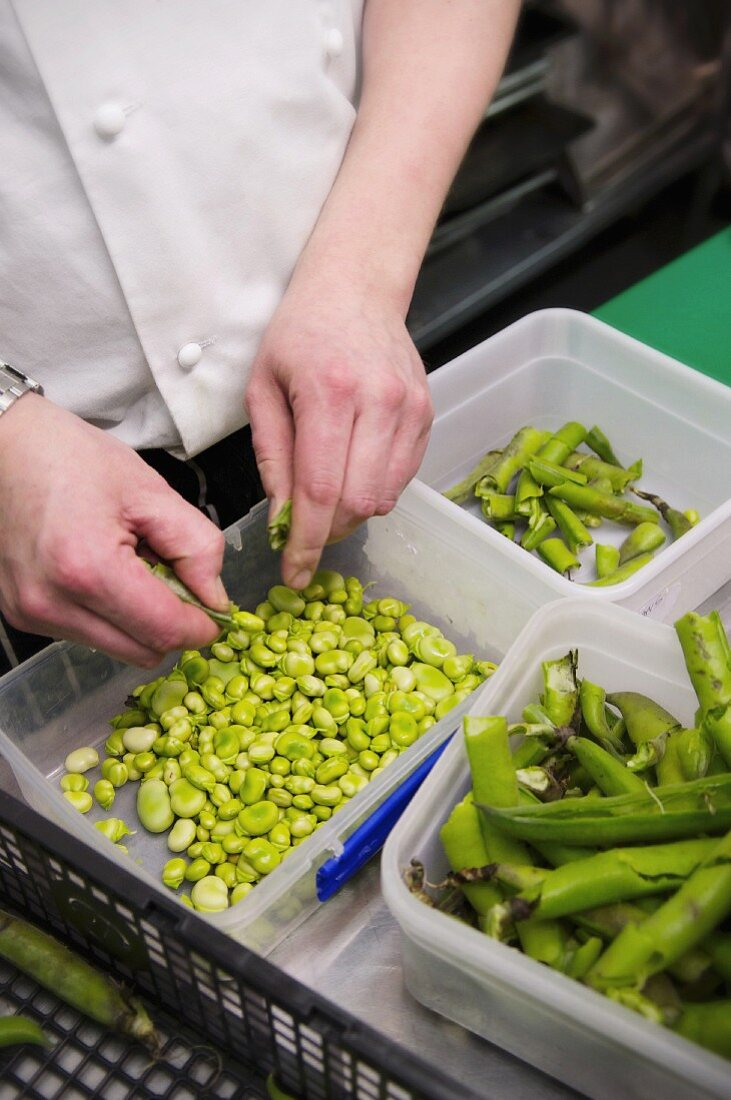 Beans being shelled