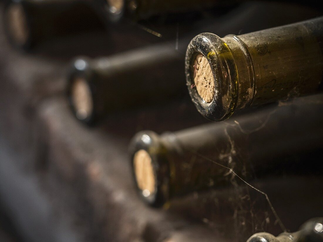 Bottles of wine stored in a cellar in Kakheti wine region, Georgia, Caucasus