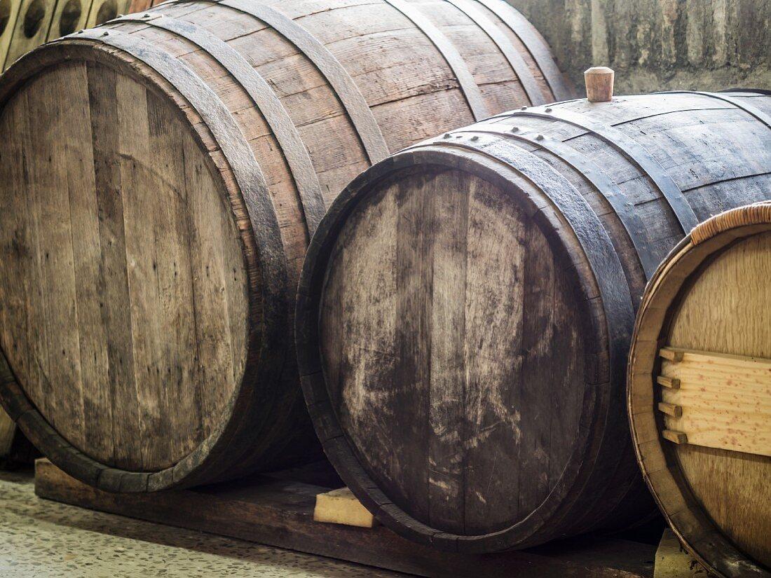 Old wine barrels in a cellar in the Kakheti wine region, Georgia, Caucasus