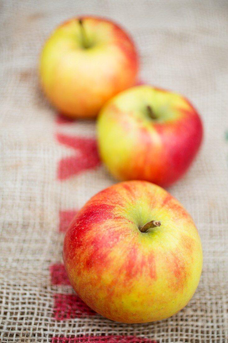 Three fresh apples on a piece of jute