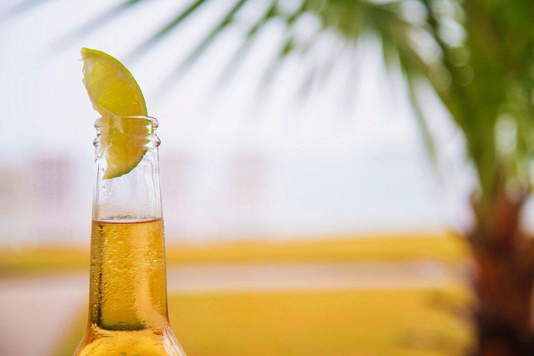 A bottle of beer garnished with slice of lime
