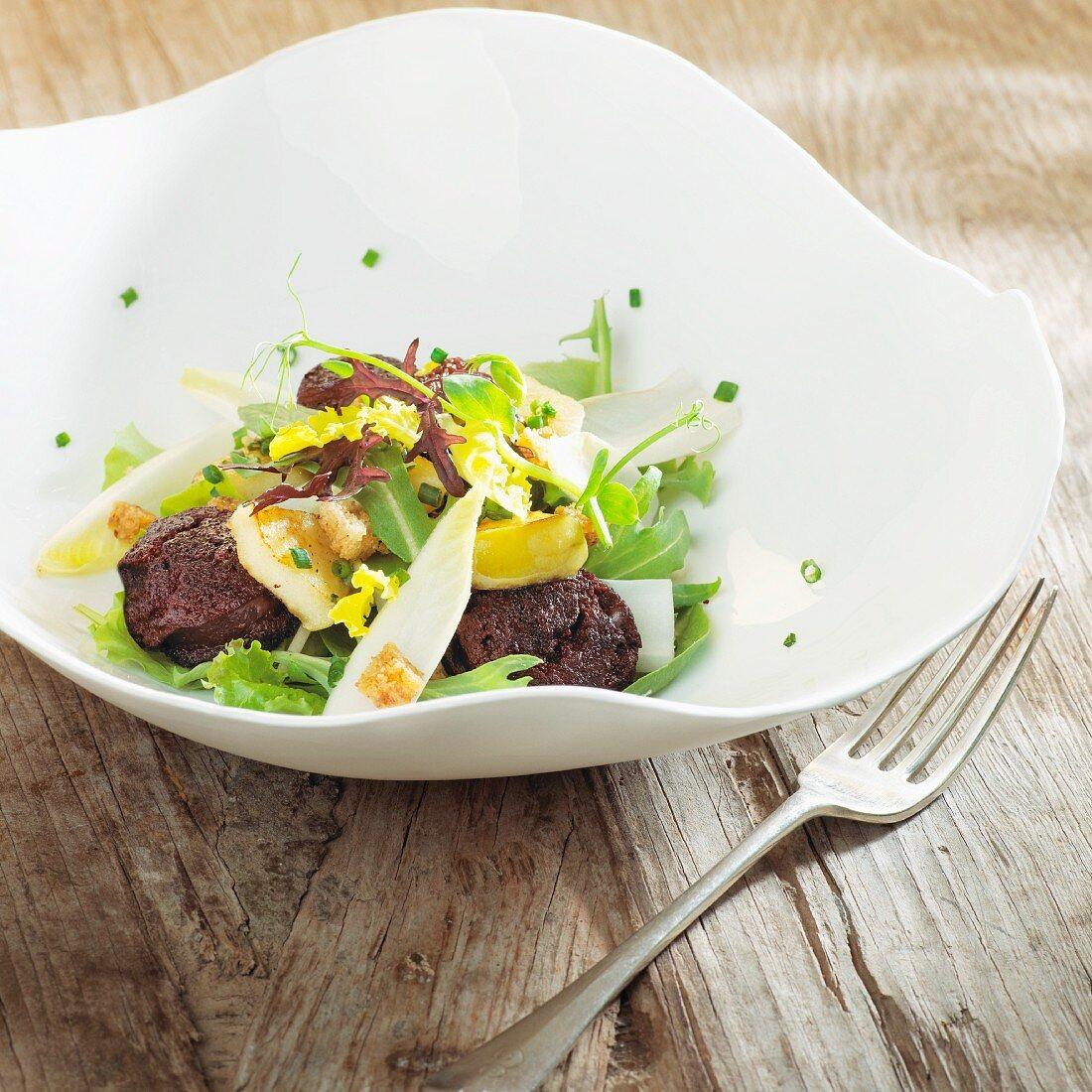 Chicory salad with black pudding