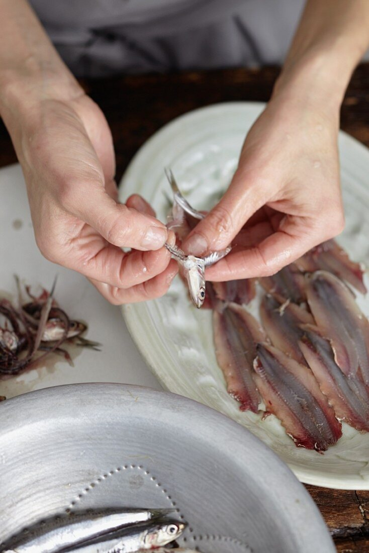 Anchovies being cleaned