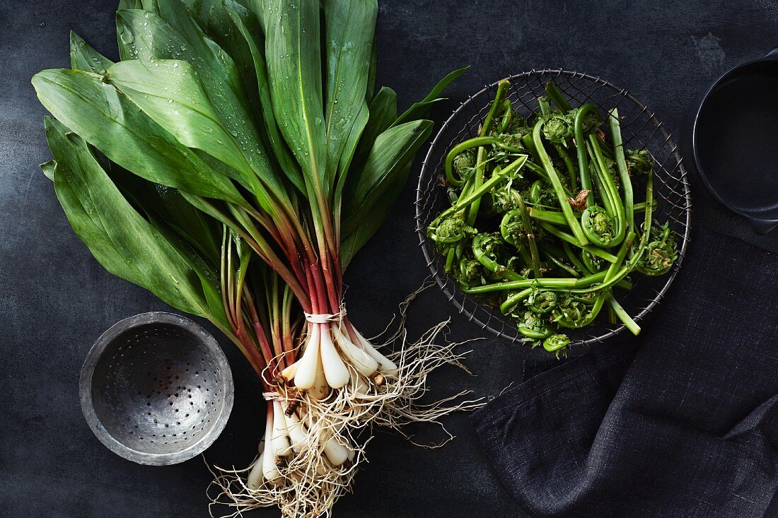 Spring onions and fern sprouts