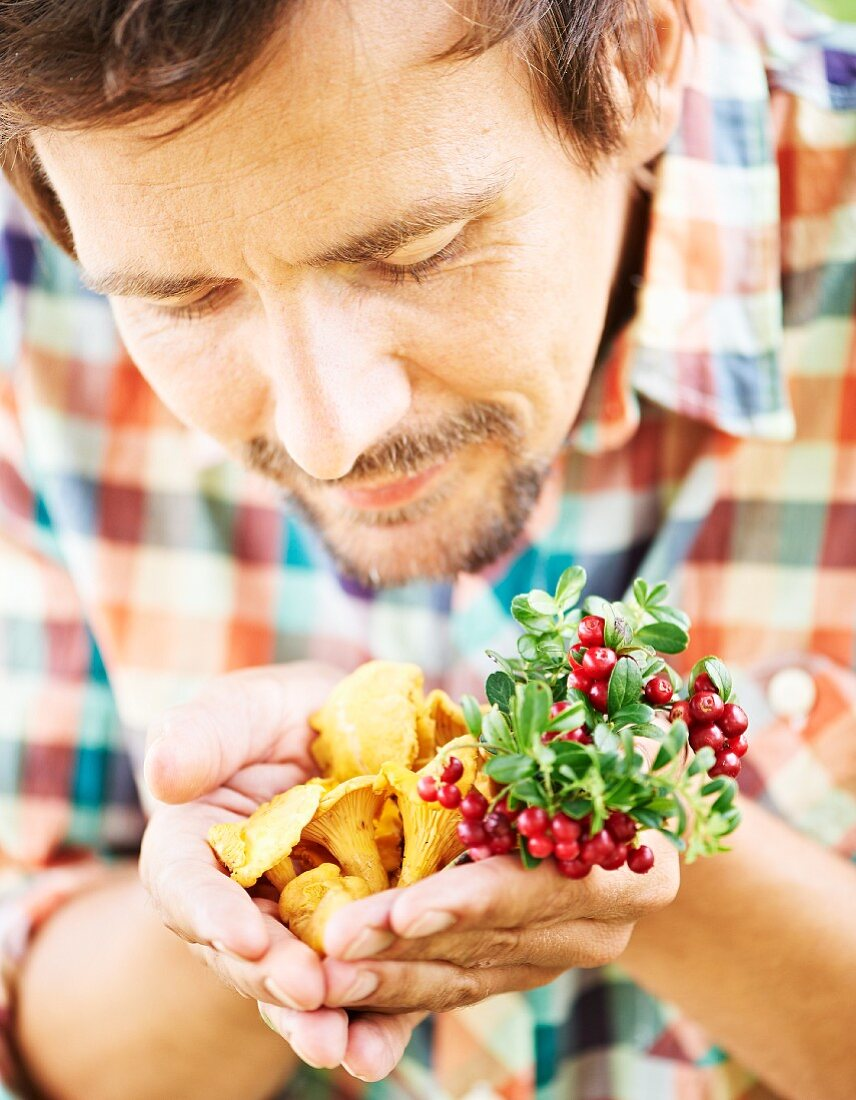 A man sniffing freshly picked chanterelle mushrooms
