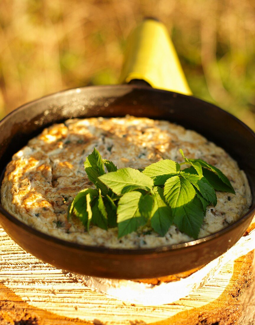 Omelette with pigweed