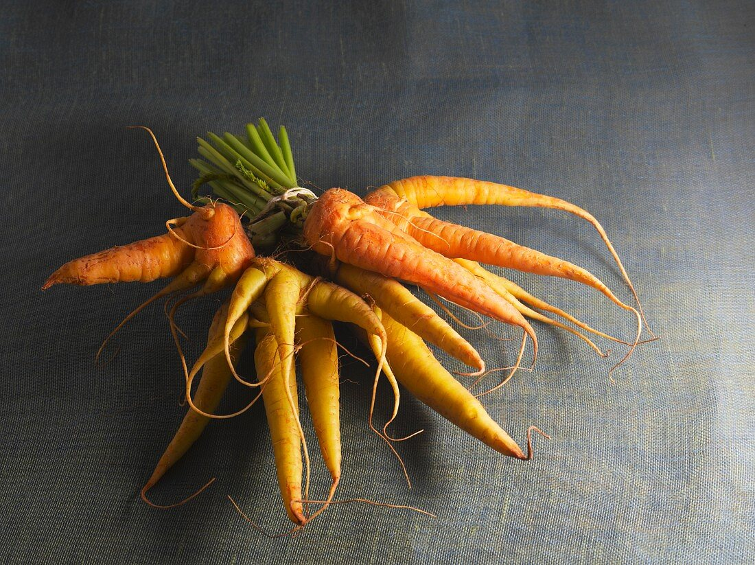 A bunch of carrots tied with string
