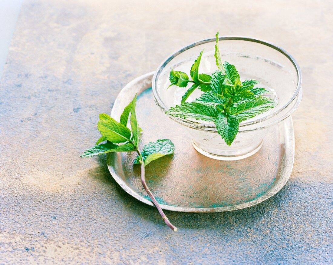 Mint in a bowl of water