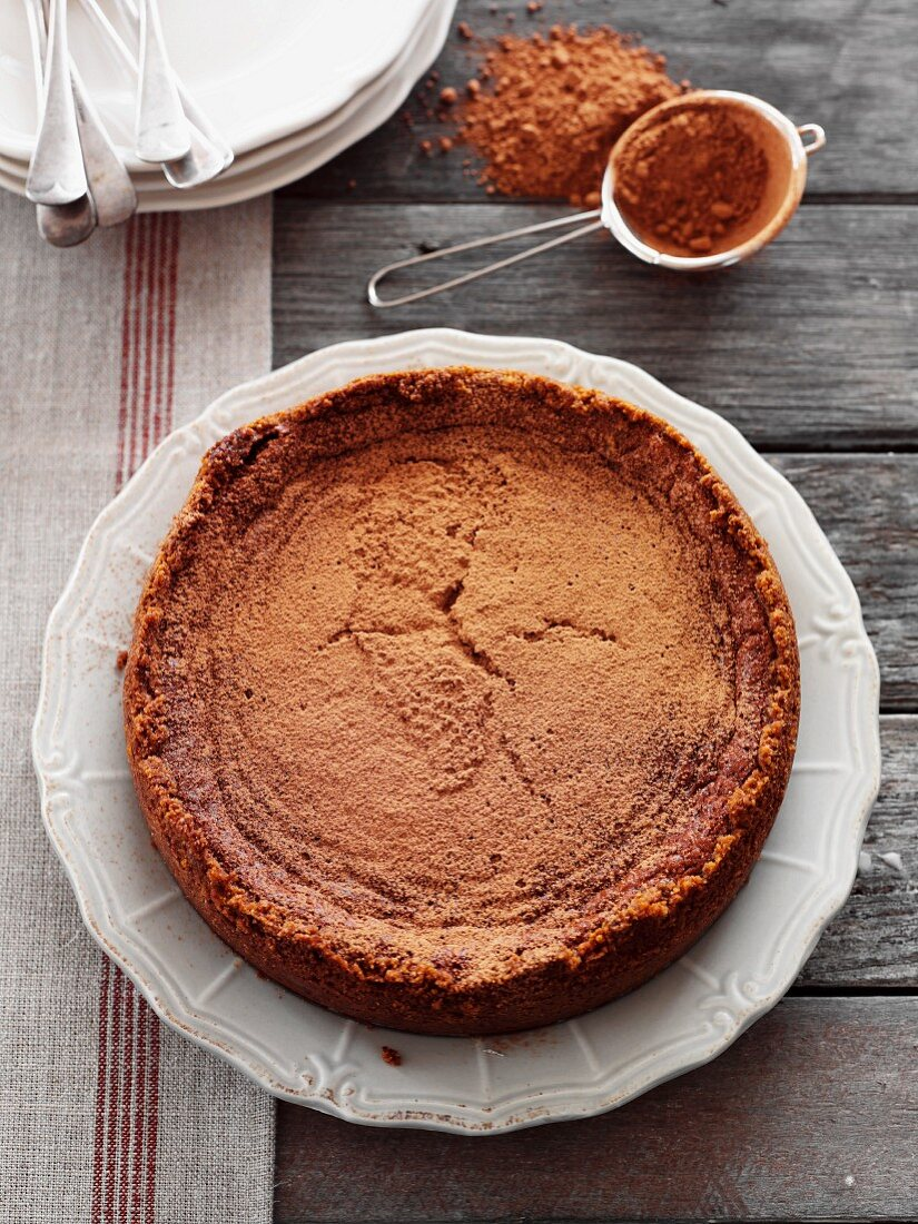 Chocolate cheesecake with cocoa powder