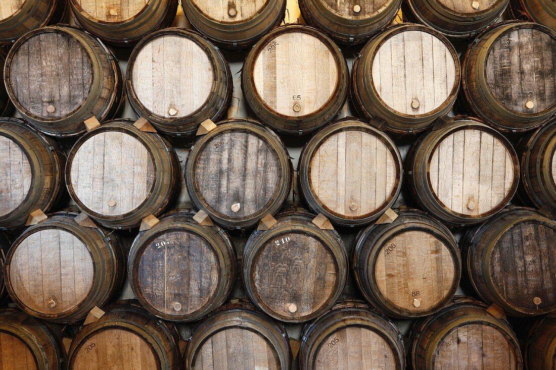 Stacks of oak barrels in a wine cellar