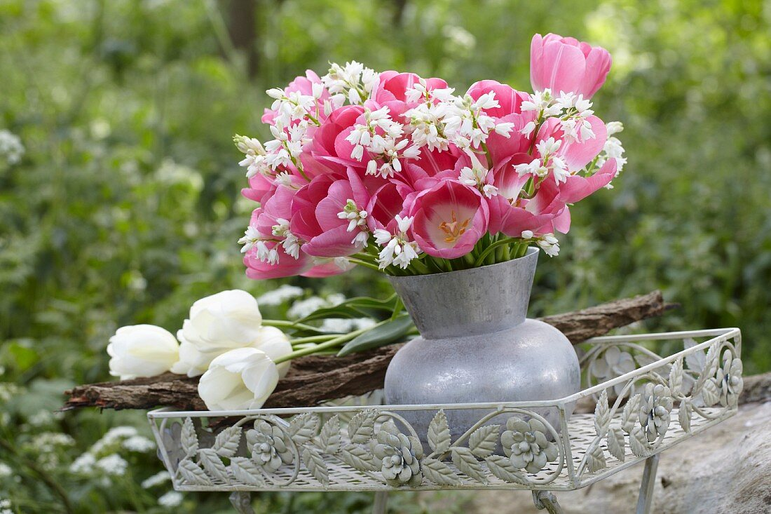 A bunch of pink tulips (Tulipa Sauterness) in a vase