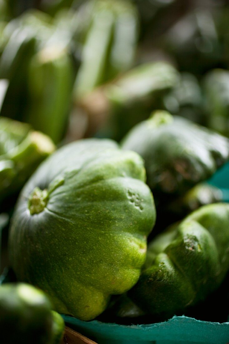 Green Patty Pan Squash at Farmer's Market in Baltimore