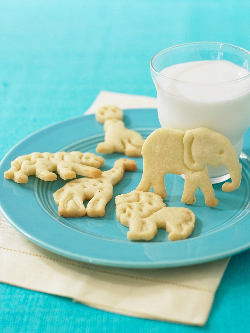 Animal Cookies on a Blue Plate with a Glass of Milk