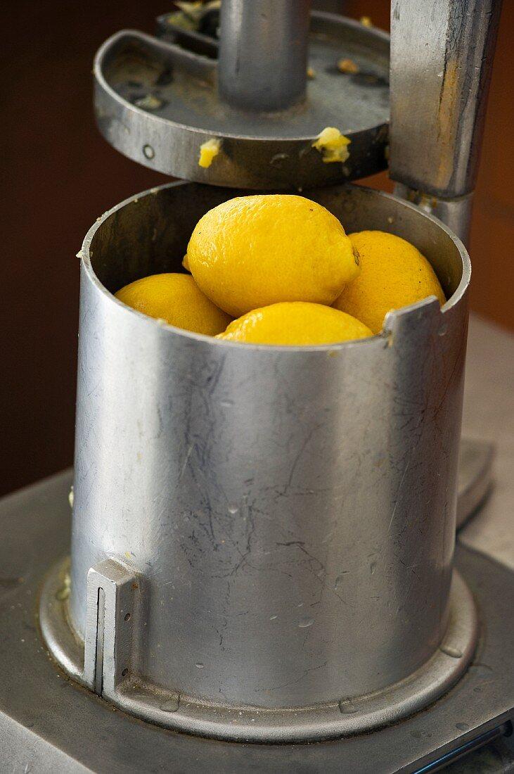 Menton lemons in a press