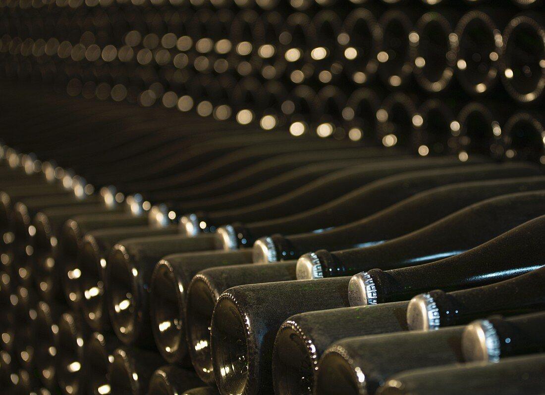 Old, dusty wine bottles with bottle tops in a wine cellar