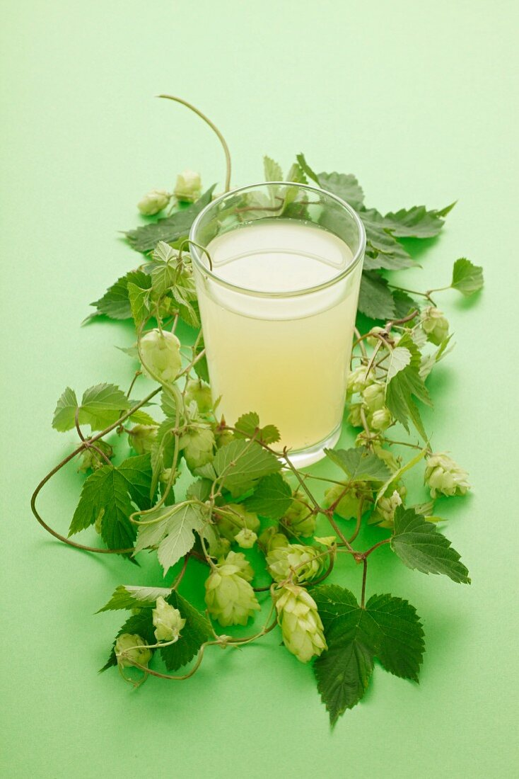 A hops drink in the middle of a wreath of hops