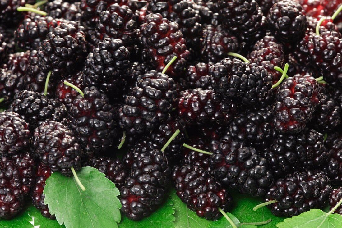 A heap of mulberries